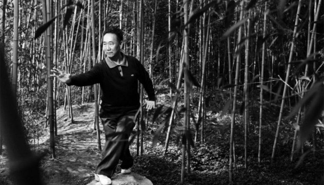 Photographie de maître Di Guoyong