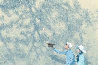 Saisons, 2012, Jungho Lee
