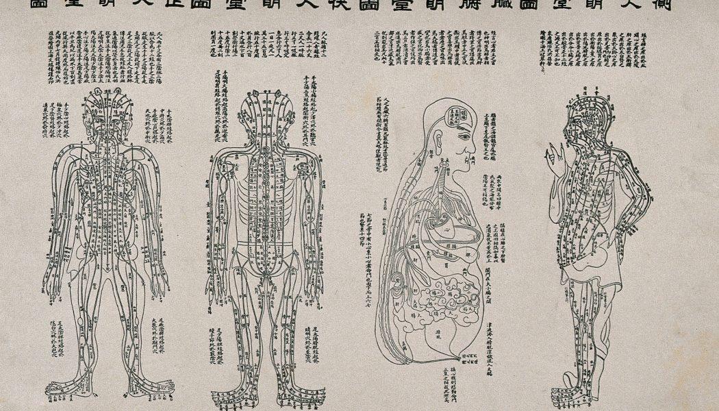 Diagramme anatomique montrant les canaux d'air et les organes du corps, quatre personnages Gravure sur bois avec une typographie sur papier de riz, Ming 19 e siècle