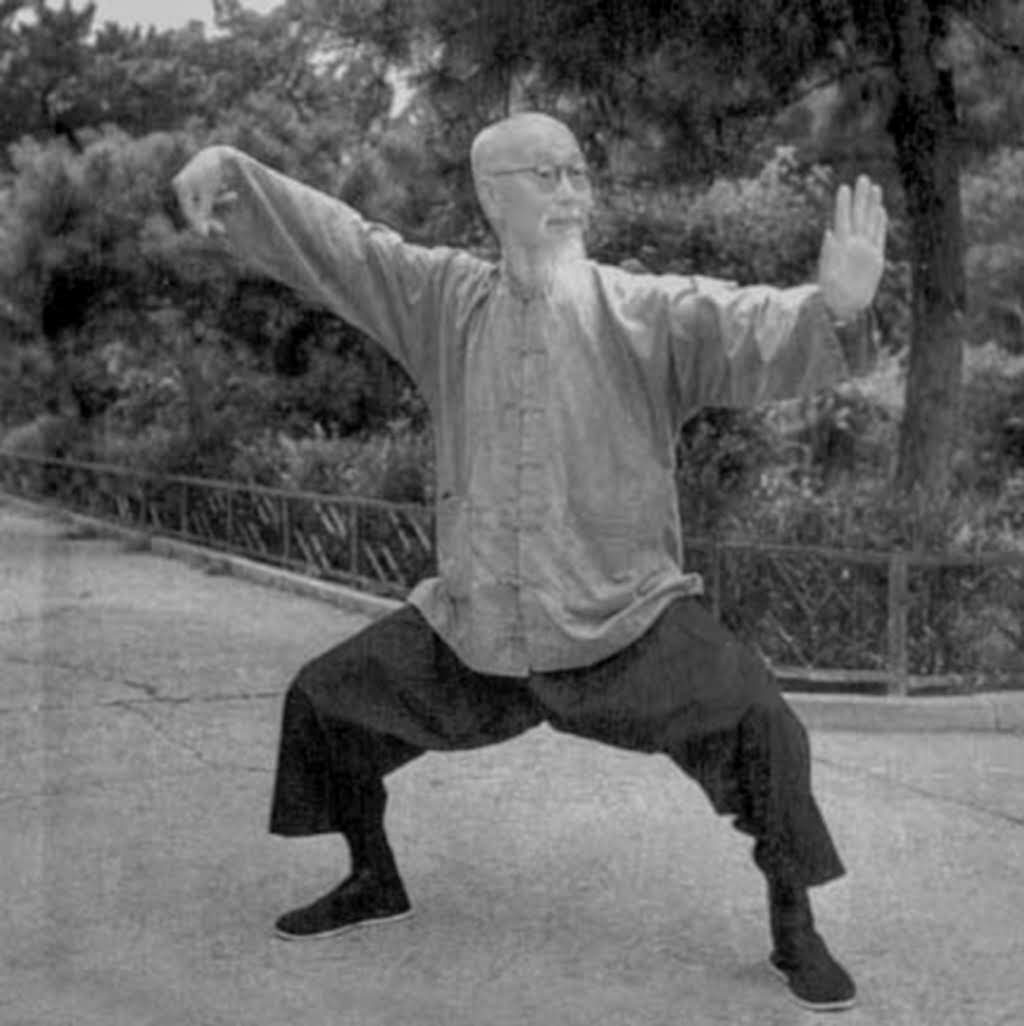 Photographie de maître Wu Tu Nan