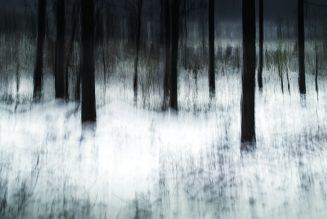 Paysages de Chris Friel