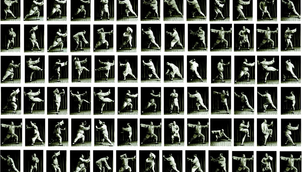 La forme interprétée par Yang Chengfu