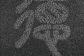 Les vertus cachées - vertueuses, porcelaine sur toile, 2014, Caroline Cheng