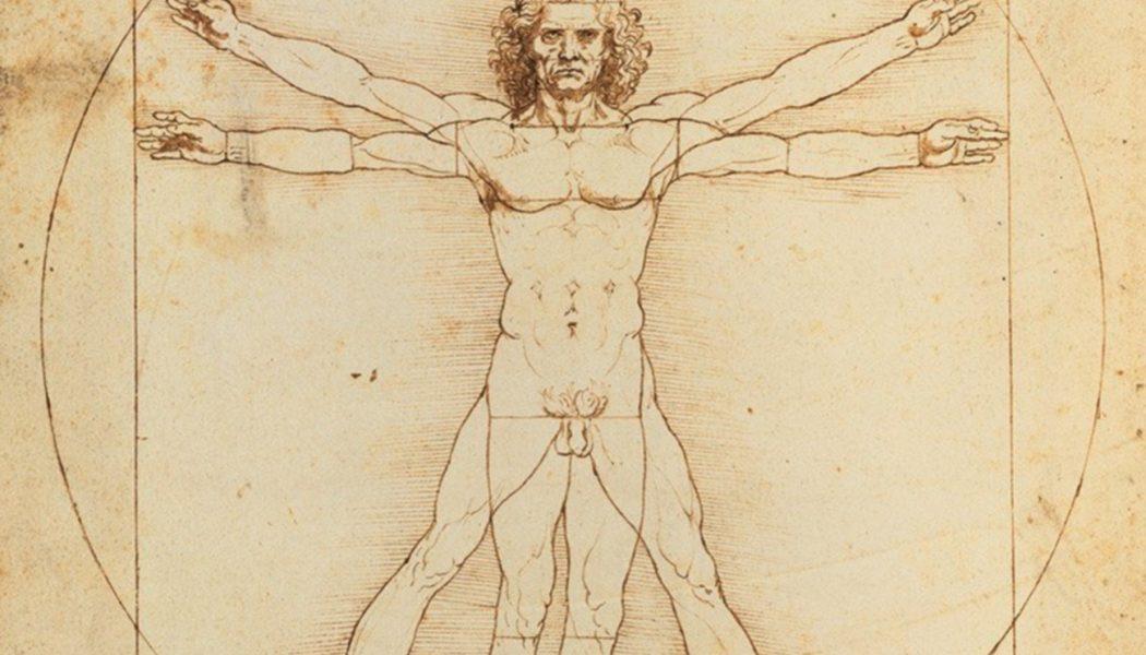 L'Homme de Vitruve, Léonard De Vin