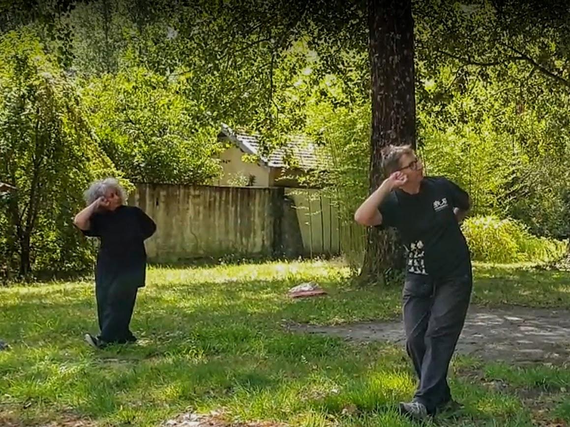 Séminaire d'été de la formation au qi gong