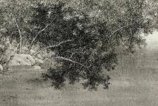 Chuchotements des bois, 2014, encre sur papier, panneau du triptyque, Koon Wai Bong