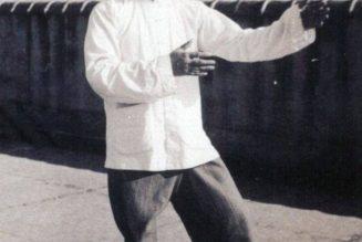 Posture du joueur de pipa, Cheng Man Ching
