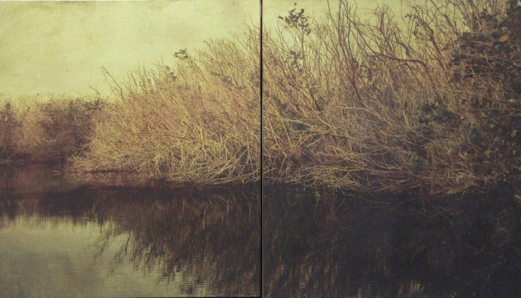 Backwater, 2008, Dorothy Simpson Krause