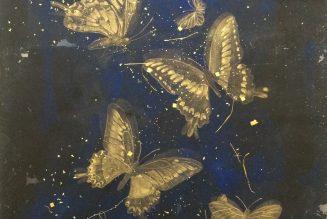 Psyché, papillon d'or, Hiroko Otake