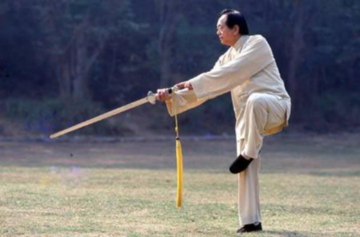 Hommage au taijiquan Zheng zi