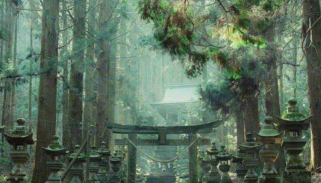Marches et tori du sanctuaire Kamishikimi Kumanoimasu
