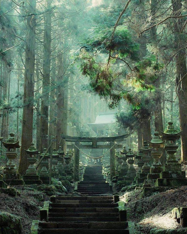 Le sanctuaire Kamishikimi Kumanoimasu