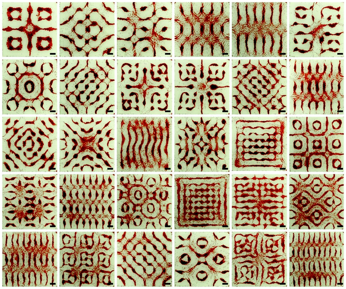 Cymatique