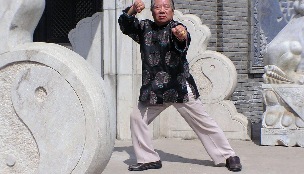 Fu Shengyuan à Yongnian en 2005